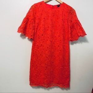 Ann Taylor Coral Lace Lined Dress SZ 2 Bell Sleeve